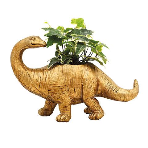 Dinosaur Plant Pots For £5 - Morrisons