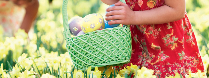 Easter activities morrisons easter egg hunt ideas negle Gallery
