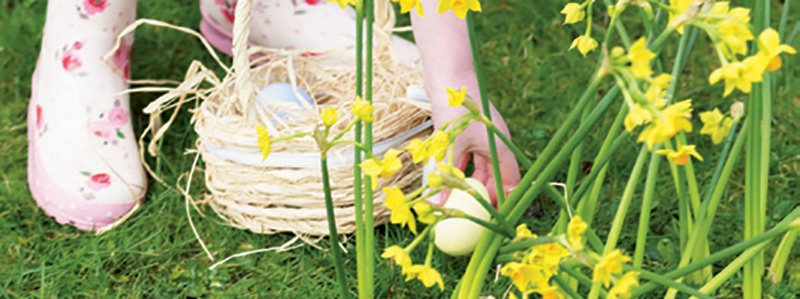 Easter Hunt Ideas 1