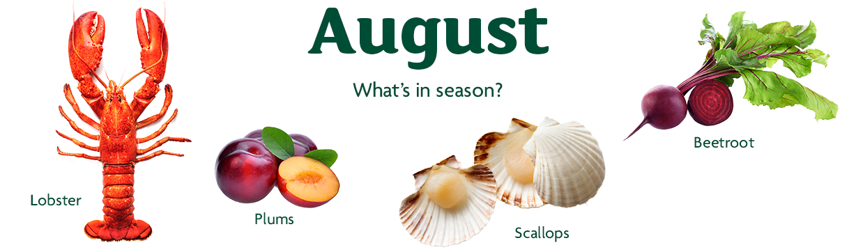 August In Season Ingredients